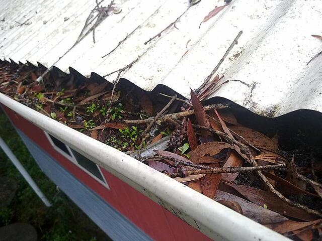 Metal Roofing - Brisbane - How to Guide: Gutter Maintenance